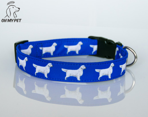 Obroża na plastikową klamrę Golden Retriever in Royal Blue